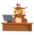 owl working on computer on white background vector image vector image
