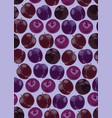 plum fruits seamless pattern on purple background vector image vector image