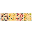 set abstract seamless patterns with fruits vector image