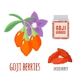 Superfood goji berries set in flat style vector image vector image