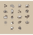 Tea and Spices Flat Icon Set vector image
