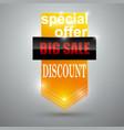 big-sale-banner vector image vector image