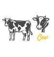 cow black and white vector image vector image