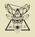 Hand drawn of a deer head in hipster style vector image vector image