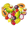 heart shape with exotic tropical fruits vector image vector image