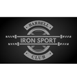 Iron sport Disk weight and barbell vector image vector image