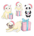 pets face dog cat and rabbit vector image vector image