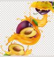 plum fruit in splashing yellow juice vector image