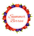 round frame label with summer berries vector image