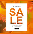 autumn sale poster with leaves vector image vector image