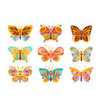 beautiful colorful butterflies set vector image