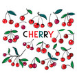 cherry sweet fruit icons set cherry vector image vector image