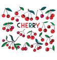 cherry sweet fruit icons set vector image