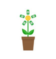 growing paper money tree coin with dollar sign vector image