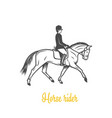horse rider black and white objects vector image