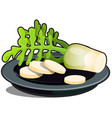 sliced on a plate parsnip root isolated on a vector image vector image