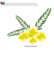 Tribulus Omanense The Native Flower of Emirates vector image vector image