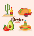 delicious mexican food icons vector image vector image