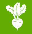 fresh beetroot icon green vector image vector image