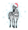 graphical zebra in santa claus hat isolated on vector image vector image