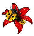 ladybugs in garden red vector image vector image
