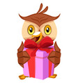 owl holding gift on white background vector image vector image