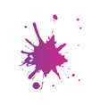 splash paint isolated icon vector image