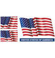 the usa national flag vector image