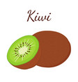 tropical fruit kiwi whole flat style vector image vector image