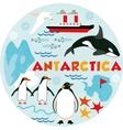 Antarctica vector image vector image