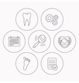 Pacifier footprint and dental tooth icons vector image vector image