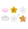 pink lotus forget-me-not pattern flower set vector image vector image