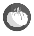Vegetable icon vector image vector image