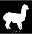 alpaca it is white icon vector image
