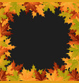 autumn leaves on a grey background vector image