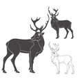 black and white a deer vector image