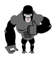 Gorilla thumbs up showing well Sign all right vector image vector image