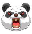 mascot head an panda vector image vector image