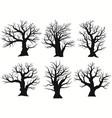 tree silhouette black bare oak outline detailed
