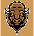 bison head mascot in cartoon style vector image