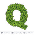 letter q symbol of green leaves vector image