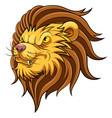 mascot head an lion vector image