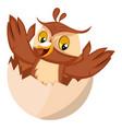 owl in egg shell on white background vector image vector image