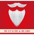 Realistic Christmas Santa white beard with curly