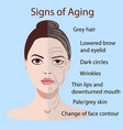 signs of aging face with two types of skin vector image vector image