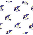 swallow bird pattern vector image