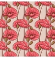 seamless background with flowers poppies vector image