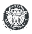 cow logo design template beef or cattle vector image vector image