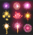 cracker firework on night sky vector image