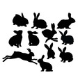 Rabbit Silhouettes vector image vector image